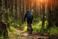 El mountainbiker masculino del atleta monta una bicicleta a lo largo de un rastro del bosque imagenes de archivo