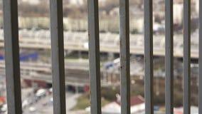 El movimiento de la vida urbana detrás del balcón de Megapolis de las barras almacen de metraje de vídeo