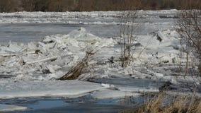 El movimiento de las masas de hielo flotante de hielo grandes en el río en la primavera almacen de metraje de vídeo