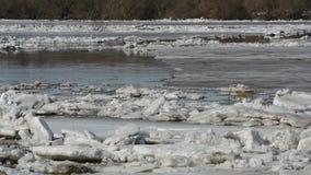 El movimiento de las masas de hielo flotante de hielo grandes en el río en la primavera metrajes