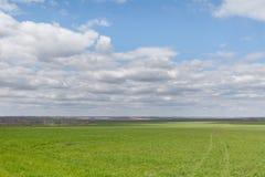 El movimiento de las nubes tormentosas sobre los campos del whea del invierno Imagenes de archivo