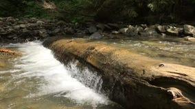 El movimiento del río en las montañas almacen de metraje de vídeo
