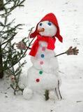 El muñeco de nieve divertido Imagen de archivo