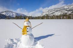 El muñeco de nieve lindo de la diversión con el sombrero de punto y la bufanda en invierno ajardinan escena de la nieve con las m Fotografía de archivo libre de regalías