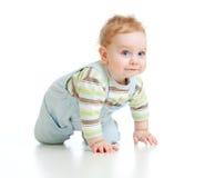 El muchacho adorable se arrastra en todo el tiro del estudio de los fours Imagen de archivo libre de regalías