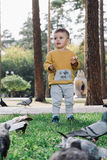 El muchacho alimenta palomas Foto de archivo libre de regalías