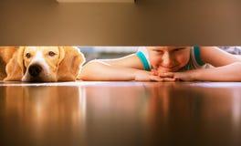 El muchacho con el amigo del perrito mira debajo de la cama Fotos de archivo