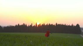 El muchacho con un cabo del super héroe corre en un campo durante puesta del sol metrajes