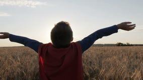El muchacho con un cabo del superhombre coloca en campos de oro almacen de metraje de vídeo