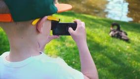 El muchacho de 5 años fotografió en un cisne negro del teléfono móvil que se sentaba en la hierba cerca de la charca almacen de video
