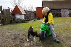 El muchacho del nieto se divierte en su hogar de la abuela en el pueblo, jugando con un perrito Fotos de archivo