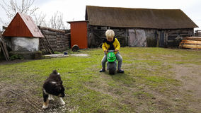 El muchacho del nieto se divierte en su hogar de la abuela en el pueblo, jugando con un perrito Imágenes de archivo libres de regalías