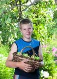 El muchacho, el adolescente con una cesta de manzanas en un jardín. Ciérrese para arriba en un día soleado Fotos de archivo