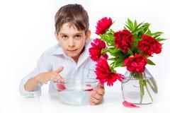 El muchacho en la camisa blanca con las peonías y el florero de cristal riegan Foto de archivo