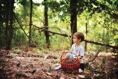 El muchacho en la madera Foto de archivo libre de regalías