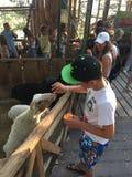 El muchacho en el parque zoológico Fotografía de archivo