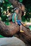 El muchacho en un árbol Foto de archivo