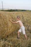 El muchacho está jugando en el campo de la paja Fotografía de archivo