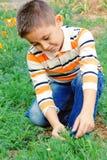 el muchacho explora la naturaleza Fotografía de archivo libre de regalías