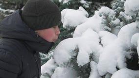El muchacho feliz del niño juega con las ramas de árbol nevosas de abeto, bosque del invierno, paisaje hermoso almacen de video
