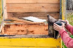 El muchacho guarda la herramienta de los beekeeper's el hacer de humo en la colmena amarilla abierta Foto de archivo