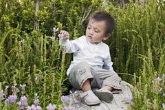 El muchacho joven estudia la naturaleza Imagenes de archivo