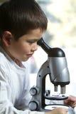 El muchacho joven lindo mira en su microscopio Imagenes de archivo