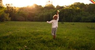 El muchacho lanza una cometa ?rbol en campo asoleado El muchacho en una camiseta gris con una cometa Un muchacho del aspecto euro almacen de metraje de vídeo