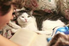El muchacho leyó el libro con el gato en la cama Fotos de archivo