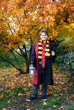 El muchacho lindo en vidrios se coloca en parque del otoño con las hojas del oro, sostiene el libro en sus manos, lleva en traje  imagenes de archivo