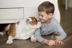 El muchacho lindo juega en el piso en una alfombra con los perritos del dogo inglés Imágenes de archivo libres de regalías