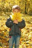 El muchacho lindo sostiene las hojas del amarillo del otoño, concepto del otoño Fotografía de archivo