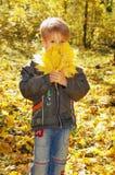 El muchacho lindo sostiene las hojas del amarillo del otoño, concepto del otoño Imagen de archivo libre de regalías
