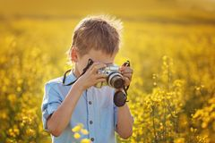 El muchacho lindo toma imágenes de flores en un campo amarillo en verano fotos de archivo libres de regalías