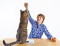 El muchacho que aprende para la escuela tiene una rotura y juegos con su gato Imágenes de archivo libres de regalías