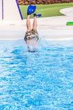 El muchacho que salta en la piscina azul Foto de archivo libre de regalías
