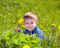 El muchacho se sienta en el diente de león;. Imagen de archivo