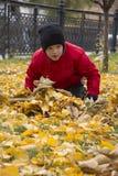 El muchacho se sienta en las hojas Fotos de archivo