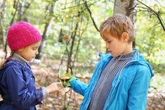 El muchacho sostiene la hoja verde y la muestra a la muchacha Imágenes de archivo libres de regalías