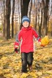 El muchacho va para una caminata en parque en otoño Foto de archivo libre de regalías