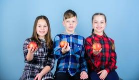 El muchacho y los amigos de muchachas en ropa a cuadros similar comen la manzana Adolescencias con bocado sano Dieta sana y vitam fotografía de archivo