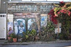 El mundo del ` s de San Francisco reconoció los murales balsámicos del callejón, 10 Fotos de archivo
