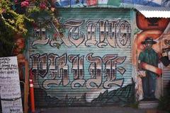 El mundo del ` s de San Francisco reconoció los murales balsámicos del callejón, 11 Foto de archivo libre de regalías