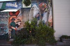El mundo del ` s de San Francisco reconoció los murales balsámicos del callejón, 13 Fotos de archivo