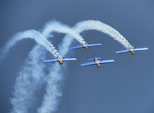 Toros del vuelo fotografía de archivo libre de regalías