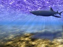 El mundo subacuático Ilustración del Vector