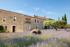 El museo de la lavanda en Provence Imágenes de archivo libres de regalías
