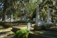 El musgo cubrió árboles hace para un ajuste idílico para un cementerio fotografía de archivo libre de regalías
