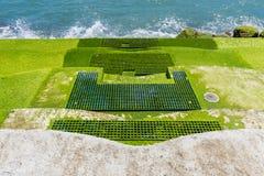 El musgo cubrió las escaleras al océano Foto de archivo libre de regalías
