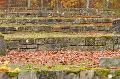 El musgo cubrió pasos de la piedra caliza en parque otoñal imagen de archivo